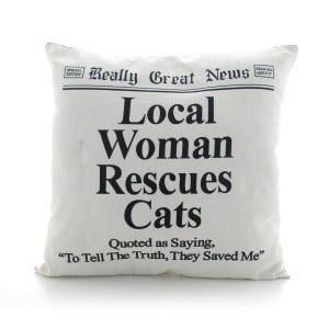 Local Woman Rescues Cats Pillow